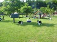 安平町鹿公園キャンプ場・写真