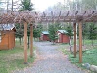 国立日高青少年自然の家からまつキャンプ場・写真