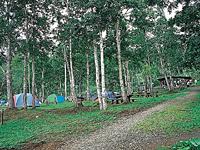 羅臼町立林間広場キャンプ場・写真