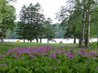 津別町営チミケップ湖キャンプ場・写真