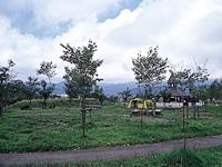 ピリカキャンプ場