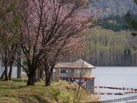 日進湖畔キャンプ場