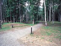 トムテ文化の森キャンプ場