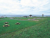 小平町望洋台キャンプ場・写真