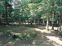旭川市21世紀の森21(にいぺ)の森自然体験ゾーン