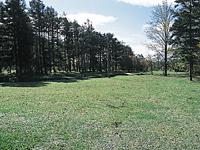 朝日公園キャンプ場・写真