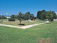 グリーンパークキャンプ場