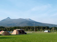 流山7daysキャンプフィールド・写真