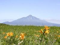 桃岩展望台コース・写真