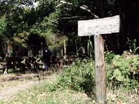 阿寒湖自然探勝路(ボッケ遊歩道)・写真