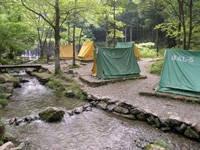 木のむらキャンプ場・写真