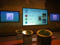 埼玉県自然学習センター・写真