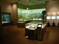 埼玉県立歴史と民俗の博物館・写真