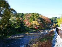 高麗川横手渓谷・写真