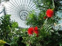 三陽メディアフラワーミュージアム(花の美術館)