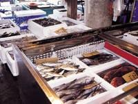 館山船形漁業協同組合直営 ふれあい市場・写真