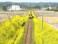 いすみ鉄道・写真