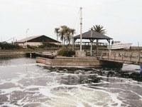 九十九里海釣りセンター・写真