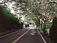鎌倉山・写真