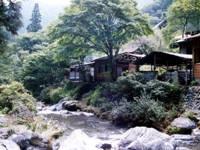 百軒茶屋キャンプ場・写真