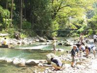 秋川国際マス釣場・写真