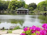 清澄庭園・写真