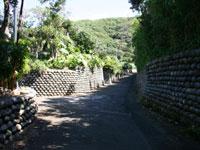 陣屋跡(玉石垣)