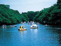 井の頭公園ボート場・写真