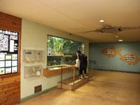 井の頭自然文化園・水生物園・写真