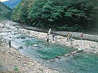 神之川キャンプ場・写真