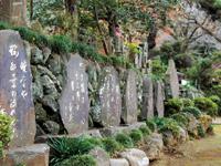 正覚寺・写真