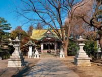 杉山神社・写真