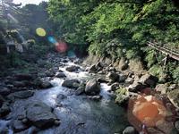 早川(堂ヶ島)渓谷遊歩道・写真