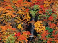 蛇淵の滝・写真