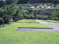 わらびのオートキャンプ場・写真
