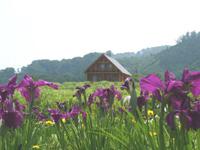 菖蒲高原キャンプ場・写真