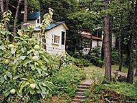 自遊の森・写真