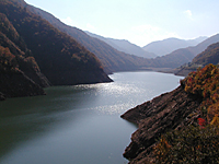 桂湖・写真