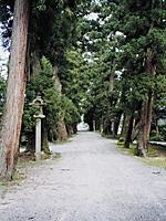 赤丸浅井神社・写真