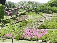 水道つつじ公園・写真