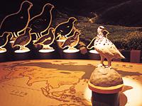富山県立山センター立山自然保護センター・写真