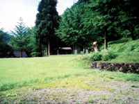 五箇山国民休養地相倉キャンプ場・写真