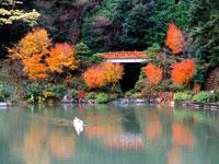 赤蔵山憩いの森