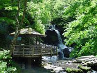 木窪大滝(大滝憩いの広場)・写真