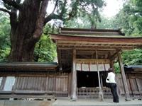 若狭姫神社・写真