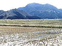杣山城跡・写真
