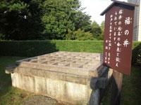 福の井・写真