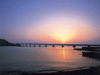 青戸の大橋・写真