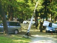 ウッドランド武川キャンプ場