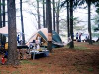 ニューブリッヂキャンプ場